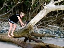 I like to climb trees...random I know