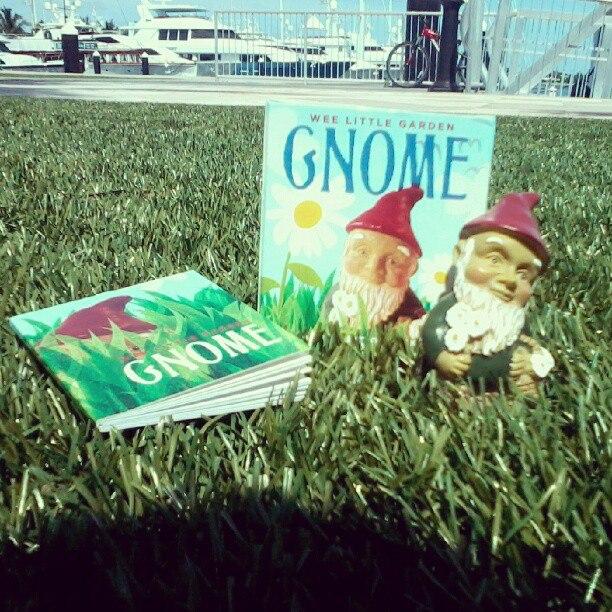 Meet the wee lil seasick Garden Gnome