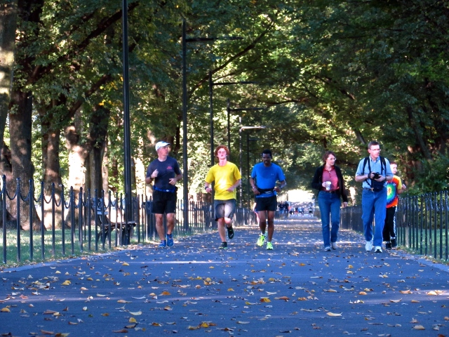 Runners in the Constitution Gardens