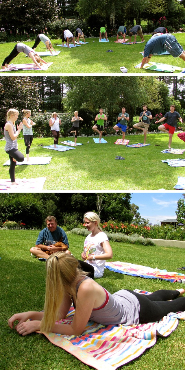 Integral Yoga morning class with Berry Diaries on Bonny Ridge Farm