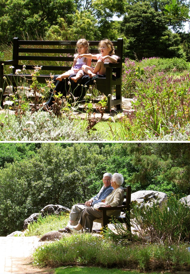 Young and old folk enjoying the fresh air, sunshine and scenic surroundings at Kirstenbosch Gardens.
