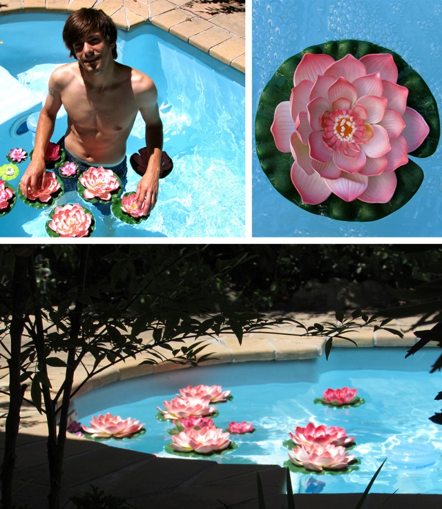 Jean-Luc amongst the Lotus flowers