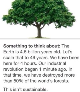 Tree fact for the day