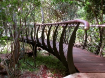 The superbly crafted Boomslang Walkway