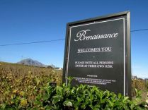 Beautiful Brenaissance in Stellenbosch