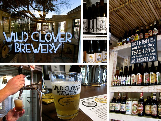 Beer tasting at Clover Brewey