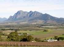 Views from the Spice Route in Paarl