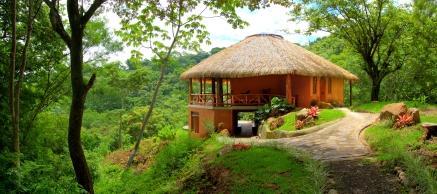 AmaTierra-Yoga-jungle 2