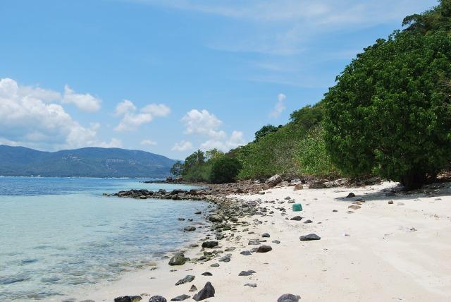 beach-102927_1280 (1)
