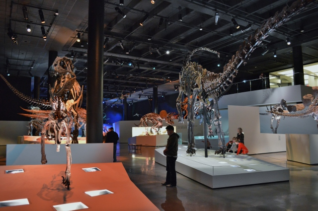 Morian_Hall_of_Paleontology_-_Houston_Museum_of_Natural_Science_2.jpg