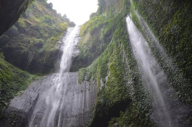 indonesia-2387275_1280